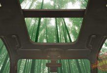 Ford và xu hướng sử dụng vật liệu xanh trong công nghiệp sản xuất ô tô